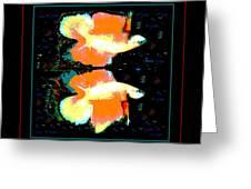 Betta Splendens X2 Greeting Card by Renee Trenholm