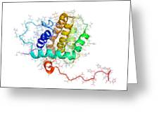 Bhrf 1 Protein From Epstein-barr Virus Greeting Card by Laguna Design