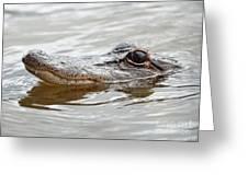 Big Eyes Baby Gator Greeting Card by Carol Groenen