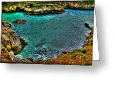 Big Sur Greeting Card by Craig Incardone