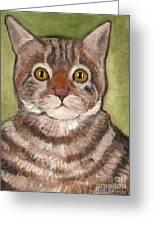 Bill The Cat  Greeting Card by Kostas Koutsoukanidis