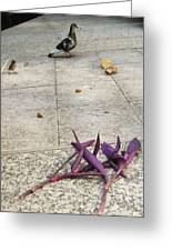 Bird And Flowers Greeting Card by Todd Sherlock