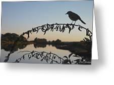 Bird Song At Last Light Greeting Card by David Gordon