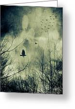 Birds In Flight Against A Dark Sky Greeting Card by Sandra Cunningham