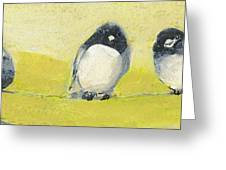 Birds On A Wire Greeting Card by Jennifer Lommers