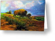 Bison Bluff Greeting Card by Robert Carver