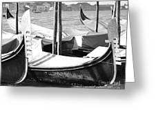 Black And White Gondolas Venice Italy Greeting Card by Rebecca Margraf