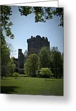 Blarney Castle Ireland Greeting Card by Teresa Mucha