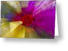 Bloom Zoom2 Greeting Card by Charles Warren