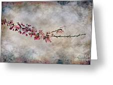 Blossom Branch Greeting Card by Elaine Manley