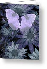 Blue Butterfly Greeting Card by JQ Licensing