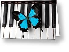 Blue Butterfly On Piano Keys Greeting Card by Garry Gay