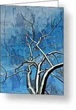 Blue Dream Greeting Card by Marty Koch