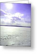 Blue Frozen Lake Greeting Card by Silvie Kendall