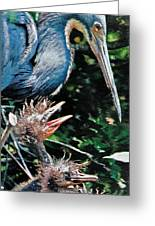 Blue Heron Family Greeting Card by Lydia Holly