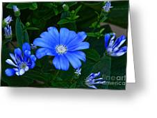 Blue Magic Greeting Card by Byron Varvarigos
