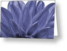 Blue petals Greeting Card by Al Hurley