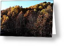 Blue Ridge 16 Greeting Card by Steven Lebron Langston