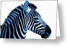 Blue Zebra Art Greeting Card by Rebecca Margraf