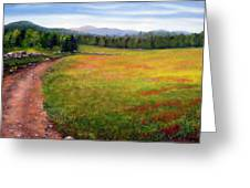 Blueberry Field 09 Greeting Card by Laura Tasheiko
