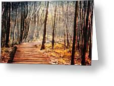 Boardwalk Greeting Card by Jai Johnson
