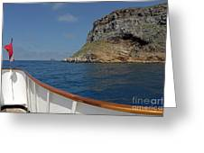 Boat Cruising By Darwin's Arch Greeting Card by Sami Sarkis