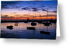 Boats In The Harbour Greeting Card by Nelieta Mishchenko