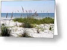 Bonita Beach Greeting Card by Carol  Bradley