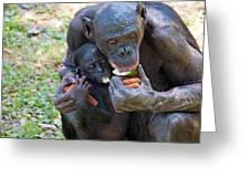Bonobo 3 Greeting Card by Kenneth Albin