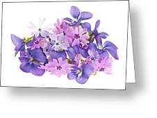 Bouquet Of Spring Flowers Greeting Card by Elena Elisseeva