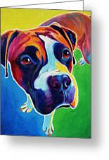Boxer - Leo Greeting Card by Alicia VanNoy Call