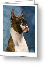 Boxer 456 Greeting Card by Larry Matthews