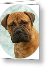 Boxer 493 Greeting Card by Larry Matthews
