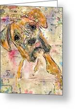 Boxer Babe Greeting Card by Marilyn Sholin