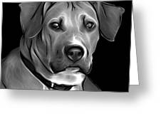 Boxer Pitbull Mix Pop Art - Greyscale Greeting Card by James Ahn