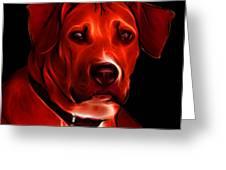 Boxer Pitbull Mix Pop Art - Red Greeting Card by James Ahn