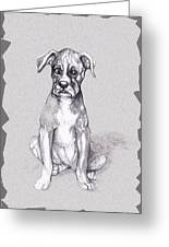 Boxer Pup Greeting Card by Peggy Wilson