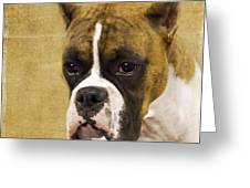 Boxer Greeting Card by Rebecca Cozart