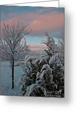 Boyd Lake Winter Moonset Greeting Card by Harry Strharsky
