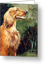Brandy   Irish Setter Greeting Card by JoAnne Corpany