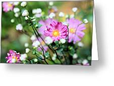 Breathing Purple Greeting Card by