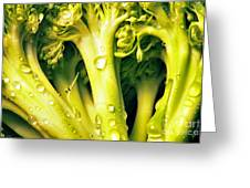 Broccoli Scape I Greeting Card by Nancy Mueller