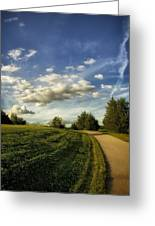 Broemmelsiek Park Walking Track Greeting Card by Bill Tiepelman