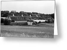 Brook Hill Dairy Farm Greeting Card by Jan Faul