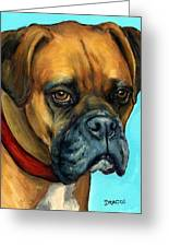 Brown Boxer On Turquoise Greeting Card by Dottie Dracos