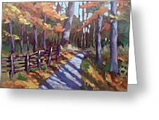 Bruce's Mills Fall Colors Greeting Card by Edward Abela