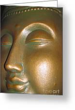 Buddha 25 Greeting Card by Cheryl Young