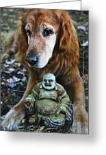 Buddha And The Old Boy Greeting Card by Lorraine Devon Wilke