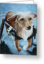 Buddy's Hope Greeting Card by Vic Ritchey