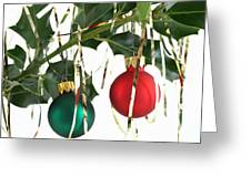 Bulbs On Holly Greeting Card by Robert Gebbie
